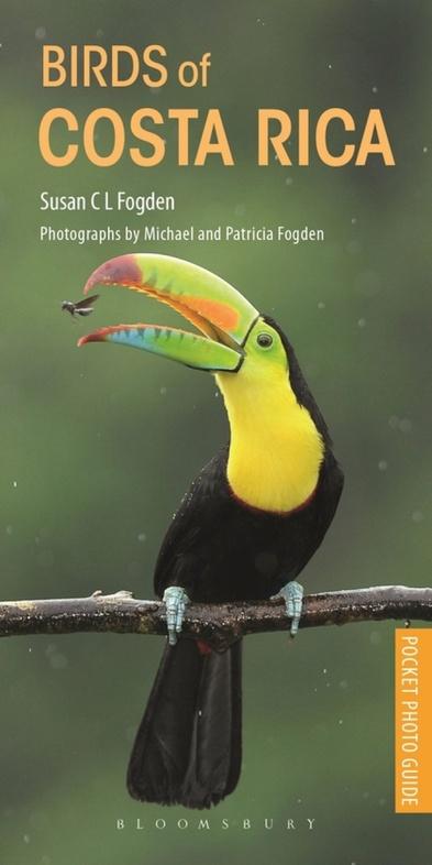 Birds of Costa Rica   vogelgids 9781472971838 Susan C L Fogden Helm   Natuurgidsen Costa Rica