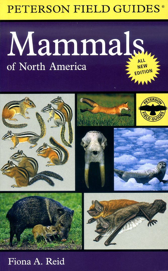 Peterson Field Guide to Mammals of North America 9780395935965  Houghton Mifflin Company   Natuurgidsen Noord-Amerika