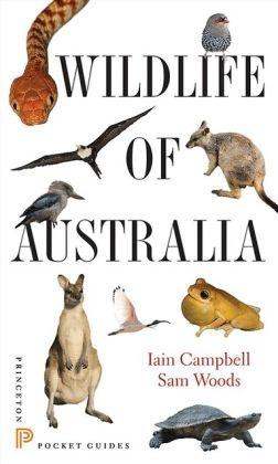 Wildlife of Australia 9780691153537 Campbell, Iain; Woods, Sam Princeton University Press   Natuurgidsen Australië