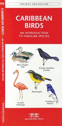 Caribbean Birds 9781583551585  Waterford Press   Natuurgidsen Caribisch Gebied