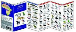 Appalachian Trail Wildlife 9781583552360  Waterford Press   Natuurgidsen VS ten oosten van de Rocky Mountains