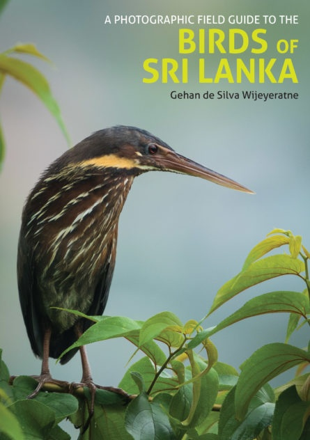 Photographic Field Guide to the Birds of Sri Lanka 9781909612839  John Beaufoy Publishing   Natuurgidsen Sri Lanka